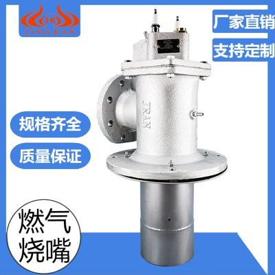 天然气烧嘴的使用范围 锻造加热炉烧嘴厂家  精燃机电