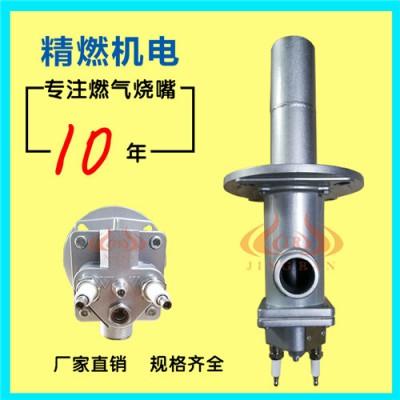 烧嘴火焰检测器的工作原理及作用 佛山精燃