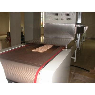花生米微波干燥设备