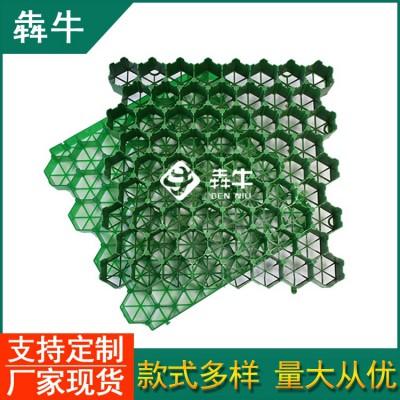 潜江市hdpe绿色塑料植草格详细咨询