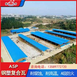 钢塑耐腐板 防腐瓦 安徽马鞍山psp塑钢复合板使用寿命长