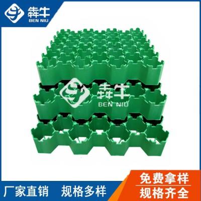惠州市hdpe绿色塑料植草格发货速度快