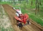 农用小型开沟培土机微型开沟培土机微型独轮开沟培土机
